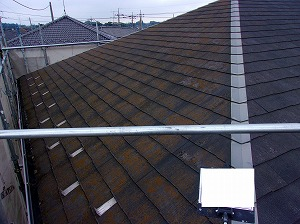 屋根塗装開始前の状態苔繁殖