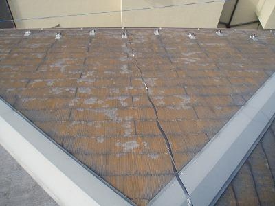 屋根に苔が