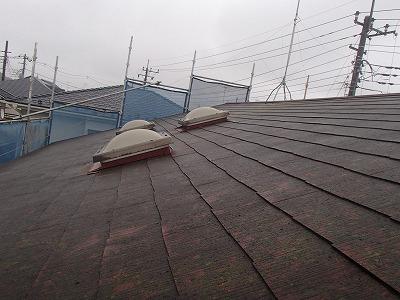 屋根にコケの繁殖があります