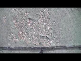 屋根瓦表面の剥離箇所に苔