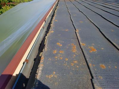 さいたま市北区で屋根塗装とベランダ塗装