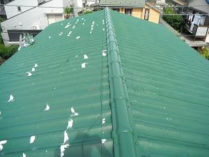 屋根中塗り完成