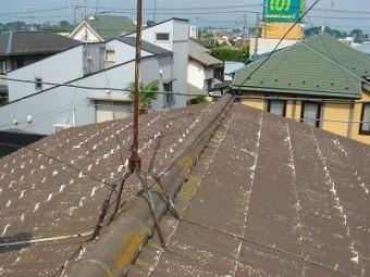 屋根 コケだらけ