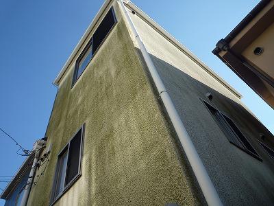 藻の繁殖した状態の外壁