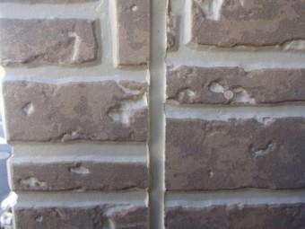 P1248135-1-columns2
