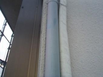 P4230264-columns2