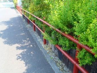 埼玉県 柵 塗装