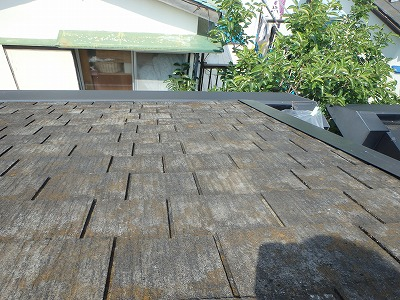 コケが繁殖している屋根