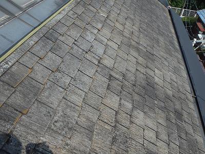 屋根に出来た雨染みやコケやカビ