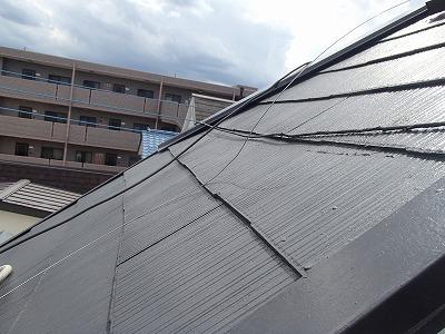 志木市 雨漏り 屋根カバー前