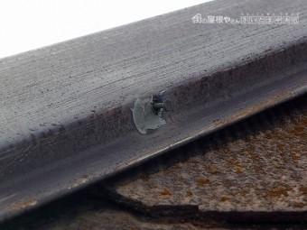 川口市 屋根補修