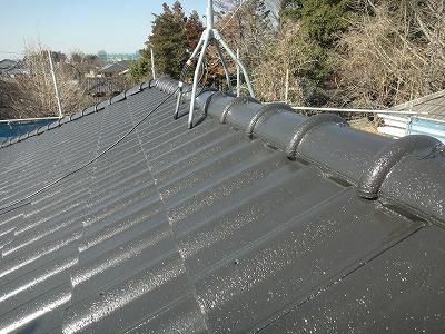 埼玉の屋根とそうしました