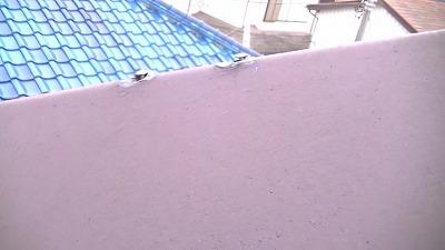 屋根 クギ なおす さいたま