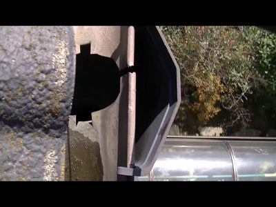 雨樋の集水器部分が詰まっています