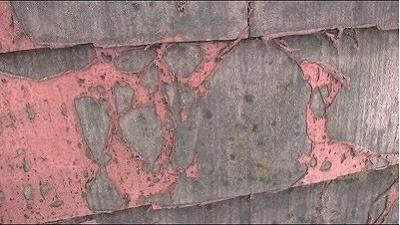 屋根瓦塗膜剥離